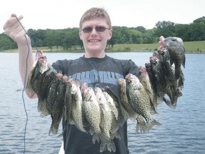 A huge catch of crappie from a fishing trip