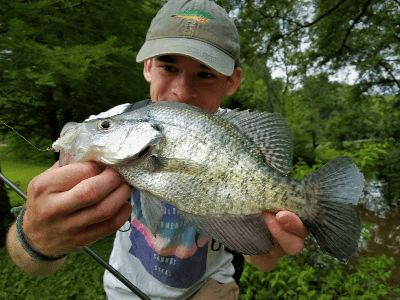A white crappie caught while fishing