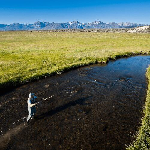 The Best Creek Fishing Tips