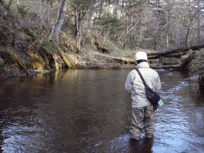 Creek fishing in an unknown location