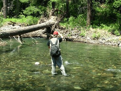 Creek fishing with a fly rod and reel