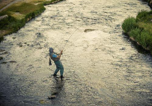 About Creek Fishing