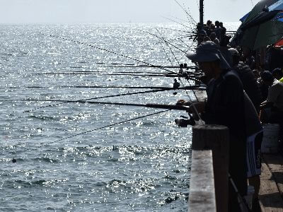 Pier fishing off Redondo Beach Pier