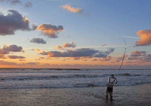 About Surf Fishing